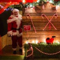 Winter Wonderland - Santas Grotto